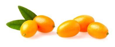 Cumquat或金桔与在白色背景关闭隔绝的叶子 免版税库存照片
