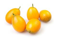 Cumquat组 免版税库存照片