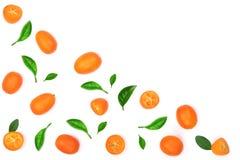 Cumquat lub kumquat z liściem na błękitnym drewnianym tle z kopii przestrzenią dla twój teksta Odgórny widok Mieszkanie nieatutow Obrazy Royalty Free