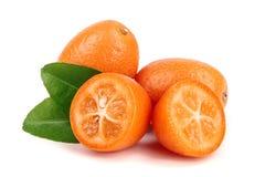 Cumquat lub kumquat z liściem odizolowywającym na białym tła zakończeniu up Obrazy Stock