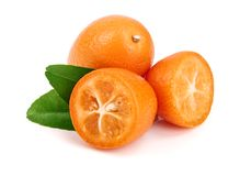 Cumquat lub kumquat z liściem odizolowywającym na białym tła zakończeniu up Obraz Stock