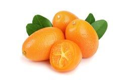 Cumquat lub kumquat z liściem odizolowywającym na białym tła zakończeniu up Obraz Royalty Free
