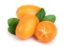 Cumquat lub kumquat z liściem odizolowywającym na białym tła zakończeniu up Zdjęcia Stock