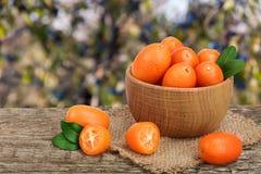 Cumquat lub kumquat z liściem w drewnianym pucharze na starym drewnianym stole z rozmytym ogrodowym tłem Obrazy Royalty Free