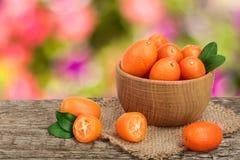 Cumquat lub kumquat z liściem w drewnianym pucharze na starym drewnianym stole z rozmytym ogrodowym tłem Fotografia Royalty Free