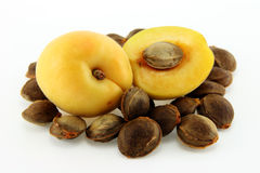 Cumulated apricot pits Royalty Free Stock Image
