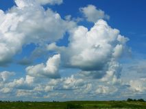 Cumuli. Beautiful white cumuli above the field on a background brightly blue sky Royalty Free Stock Photography