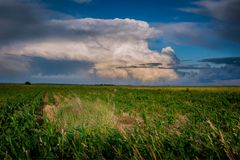 A beautiful giant cumulonimbus over the fields. Cumulonimbus Cb, whirling cloud - dense cloud expanded vertically to the height of several or a dozen kilometers Stock Photography