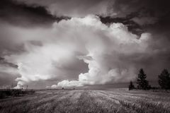 A beautiful giant cumulonimbus over the fields. Cumulonimbus Cb, whirling cloud - dense cloud expanded vertically to the height of several or a dozen kilometers Stock Photo