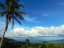 Cumulonimbus cloud, blue sky and coconut tree Royalty Free Stock Image
