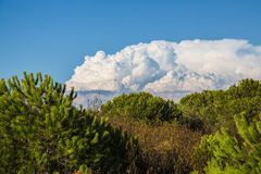 Cumulonimbus Cloud, Spain Stock Image