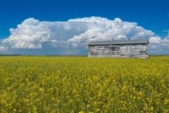 Cumulonimbusstormmoln över ett gammalt kornfack och ett canolafält arkivfoto