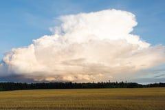 Cumulonimbuswolke Lizenzfreie Stockfotos