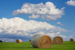 Cumulous Clouds Over a Hay Field Stock Photography