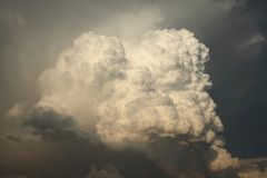 Cumulus 3. A big cumulus cloud befor the change of weather royalty free stock photo