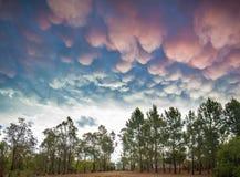 Cumulus australiens de rose de coucher du soleil photos libres de droits