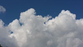Cumulus Background Royalty Free Stock Images