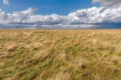 Cumulus chmury nad łąkami Fotografia Royalty Free