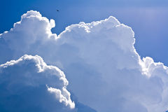 Cumulus cloud shape Royalty Free Stock Images