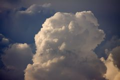 Cumulus Cloud Top. The top growing part of a dramatic towering cumulus cloud Royalty Free Stock Image