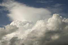Cumulus clouds. Tops of cumulus clouds in the sky stock image