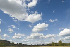 Cumulus clouds. Wide and bright blue sky with cumulus clouds over flat countryside Royalty Free Stock Image