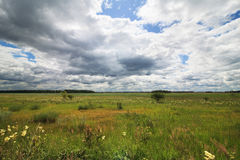 Cumulus clouds above the green meadow. Stock Photos