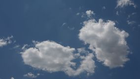Cumulus clouds on the background of a clear blue sky. A close-up shot of cumulus clouds on the background of a clear blue sky stock video