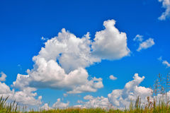 Cumulus clouds in blue sky over a meadow Royalty Free Stock Photography
