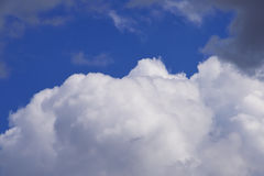 Cumulus clouds in the blue sky Stock Images