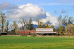 Springtime and Established Farm. Cumulus clouds hover above farm buildings that have been long established and cared for royalty free stock photos