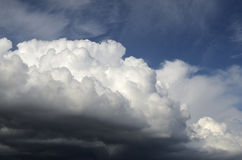 Cumulus clouds illuminated by the sun Stock Photography
