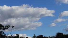 Cumulus clouds moving in sky in timelapse. Cumulus clouds moving in sky filmed in timelapse stock footage