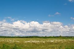 Cumulus clouds over a bog in clear day. Royalty Free Stock Photo