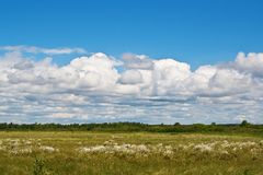 Cumulus clouds over a bog in clear day. Royalty Free Stock Photos