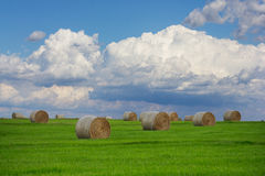 Cumulus Clouds Over a Hay Field Stock Photography