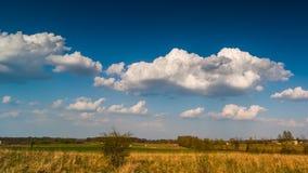 Cumulus clouds running across brilliant blue sky stock video