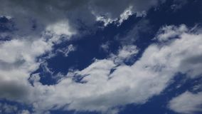 Cumulus clouds time lapse. A time lapse video showing the motion and transformation of cumulus clouds stock video