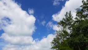 Cumulus Clouds Timelapse stock video footage