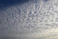 Cumulus dans un ciel bleu-foncé de matin photographie stock
