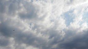 Cumulus en ciel bleu au coucher du soleil - laps de temps banque de vidéos