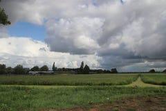 Cumulus foncés au-dessus des prés de Moordrecht aux Pays-Bas photographie stock