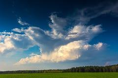 Cumulus fonctionnant ? travers le ciel bleu brillant photographie stock libre de droits