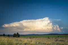Cumulus storm cloud above desert landscapde Royalty Free Stock Photo
