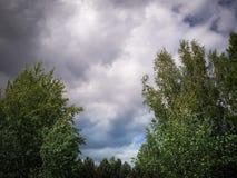 Cumulus stup?fiants avant un orage photos stock