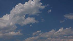 Cumulus sur le fond d'un ciel bleu clair banque de vidéos