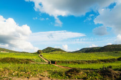 Cumuluswolken over het platteland van Sardinige stock foto