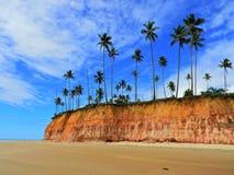 Cumuruxatiba Bahia, Brasilien: Strands klippor, blå himmel och kokosnöts träd royaltyfri bild
