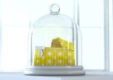 Cuna del bebé debajo de la campana de cristal Foto de archivo libre de regalías