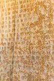 Cuneiform letters Persepolis Royalty Free Stock Image